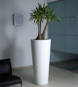 pot de fleur design