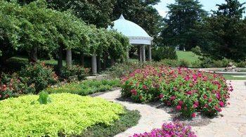 entretien et mise en propreté de votre jardin