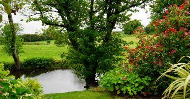 équipements indispensables pour créer un jardin