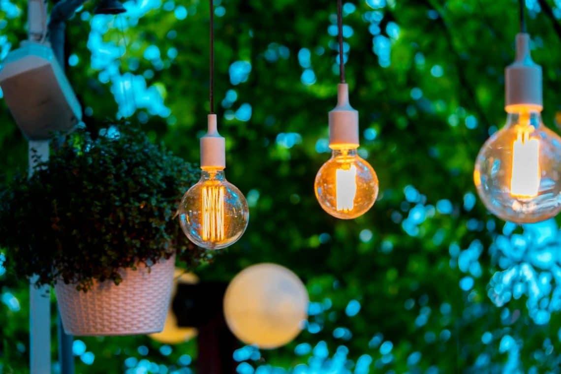 picture-eclaire-jardin